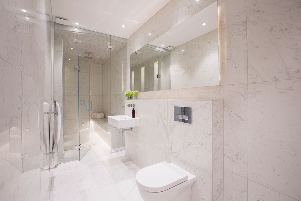 shower and loo